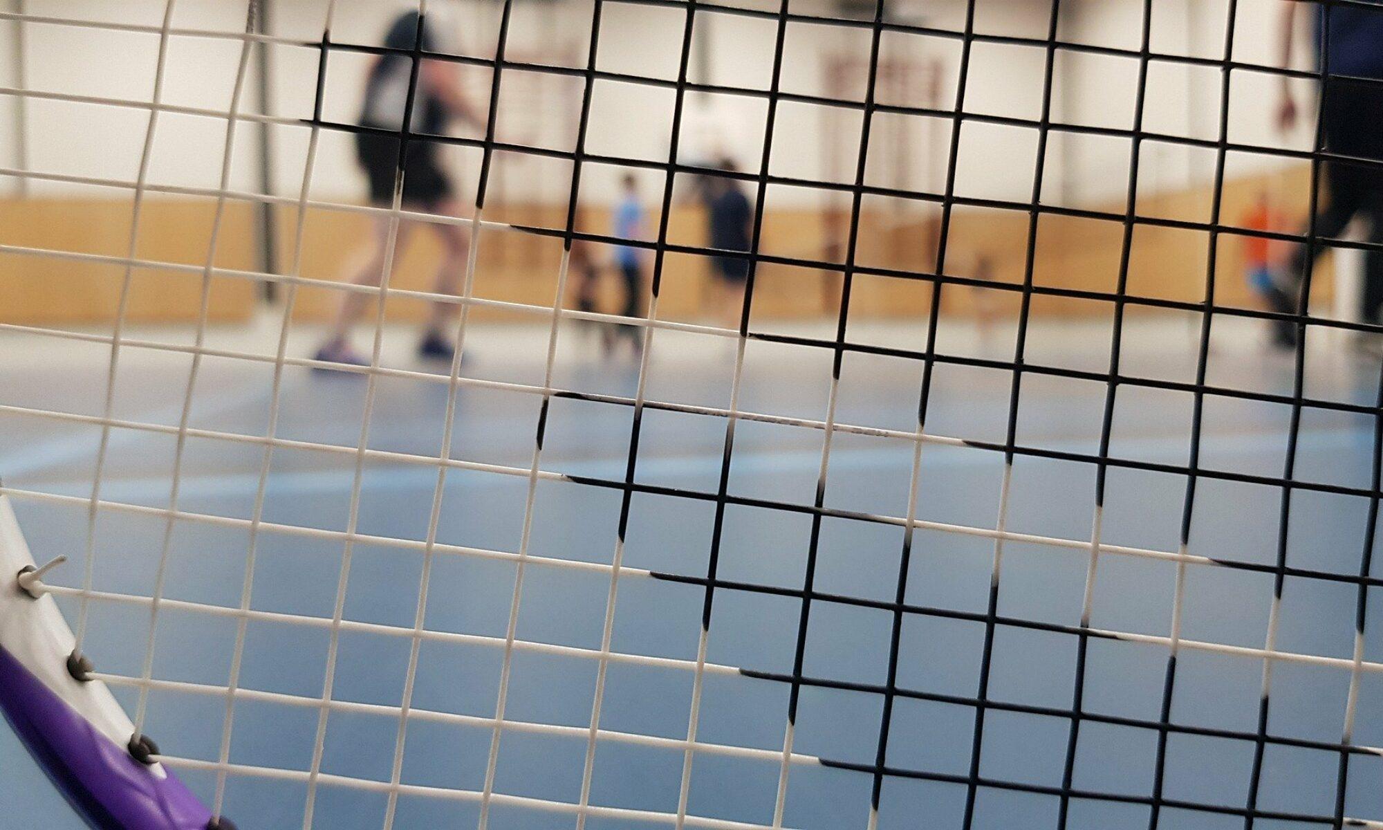 Vsg-Badminton.